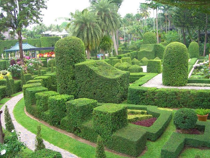 Парк Нонг Нуч (Nong Nooch Tropical Garden) 63952