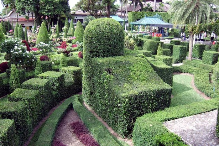 Парк Нонг Нуч (Nong Nooch Tropical Garden) 34357
