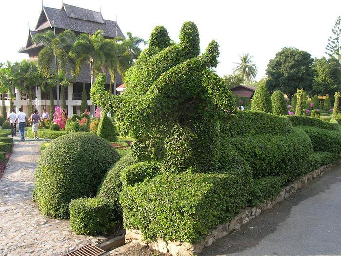 Парк Нонг Нуч (Nong Nooch Tropical Garden) 58445