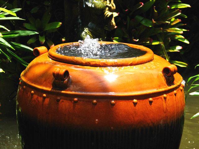 Парк Нонг Нуч (Nong Nooch Tropical Garden) 29516