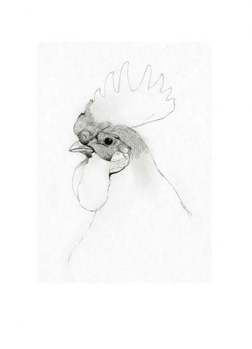 274905_chicken (361x500, 7Kb)