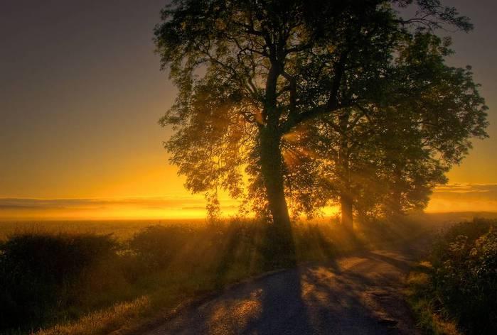 Красивый пейзаж 26 (700x472, 45Kb)