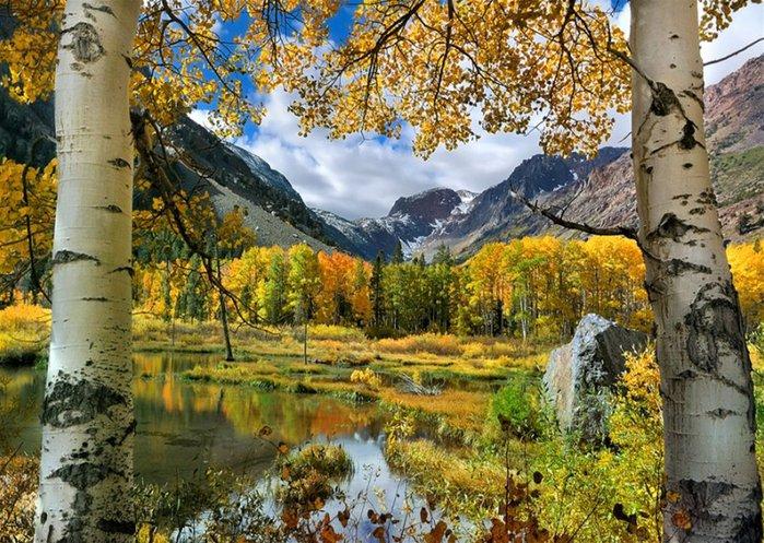 Красивый пейзаж 29 (700x497, 138Kb)