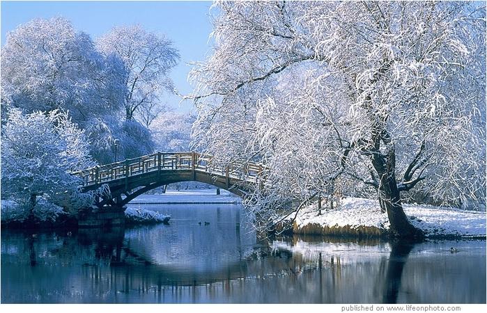 фото зима природа