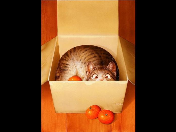 4430707_cats73 (700x525, 63Kb)