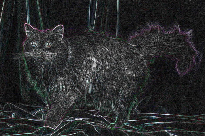 """Схема вышивки  """"Чёрный кот """": схема."""