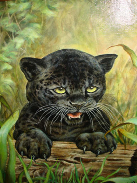 4430707_Ron_Rophar_Black_Leopard_1_ (450x600, 96Kb)