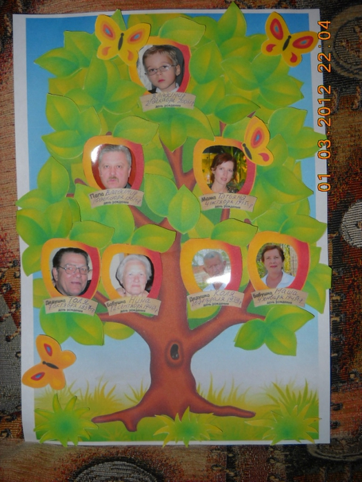 Родословное дерево своими руками нарисовать фото