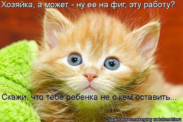 1331022442_201205031431281 (604x403, 71Kb)