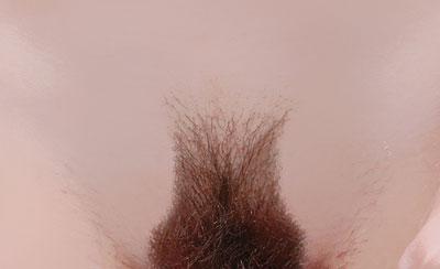 Вторник, 06 Марта 2012 г. 15:56. волосатые письки. писки. пизда. интим. в ц