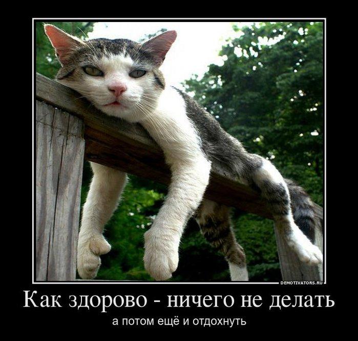 1648342_kak-zdorovo-nichego-ne-delat (700x665, 82Kb)