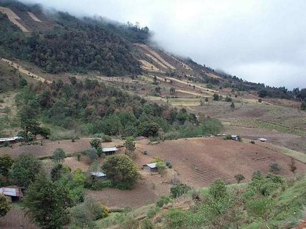 Гватемала - прекрасная страна великих Майя 13 (600x450, 85Kb)