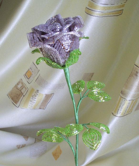 Роза крупно 1 (583x700, 551Kb)