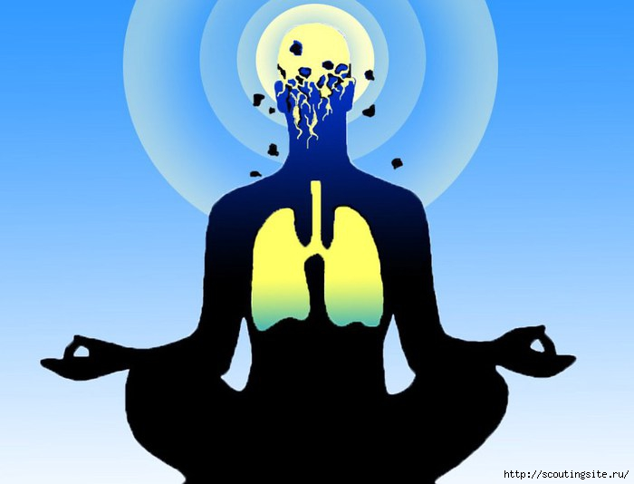 4631441_yoga2 (700x534, 104Kb)