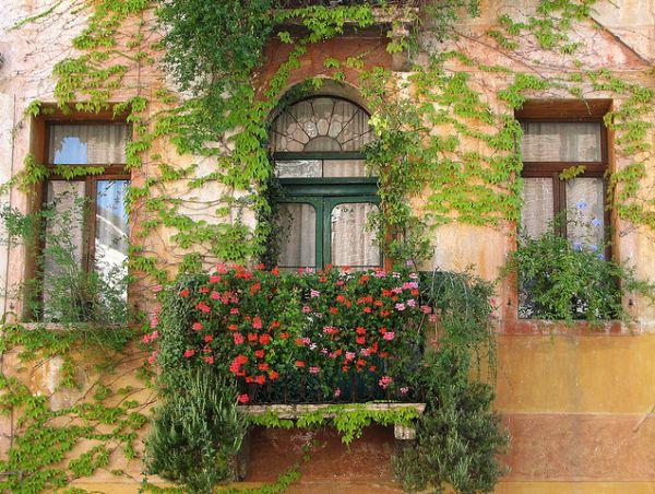 Интерьер и декор / интерьер / сад на балконе / pinme.ru / pi.