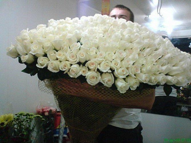 http://img0.liveinternet.ru/images/attach/c/4/84/452/84452082_large_x_f221e788.jpg