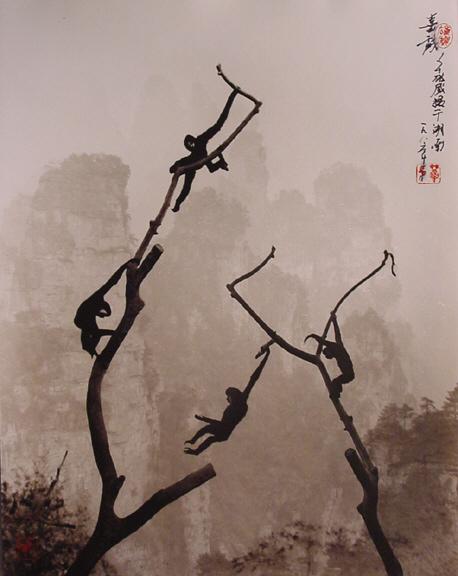 Hong_Oai_Don_Gibbons_at_Play_Tianzi_Mountain_864_303 (458x576, 104Kb)