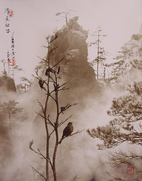Hong_Oai_Don_untitled_D_4_535_303 (453x576, 125Kb)