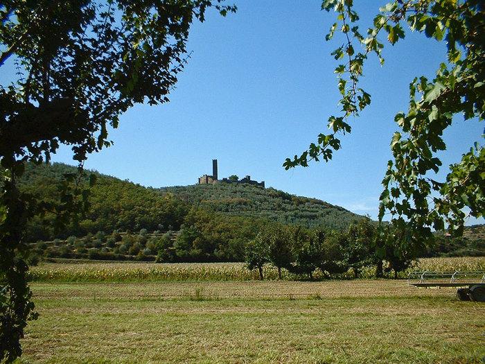 1331153294_Castello_di_Montecchio_Vesponimax___3339485 (700x525, 167Kb)