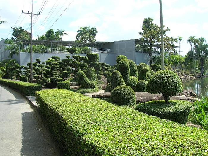 Парк Нонг Нуч (Nong Nooch Tropical Garden) 50009