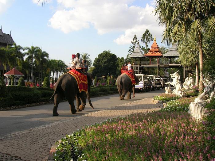 Парк Нонг Нуч (Nong Nooch Tropical Garden) 23196