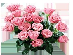 Букет розы (250x190, 82Kb)