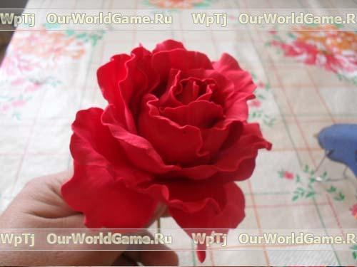 84537394 rozafoam3 Цветы из бумаги