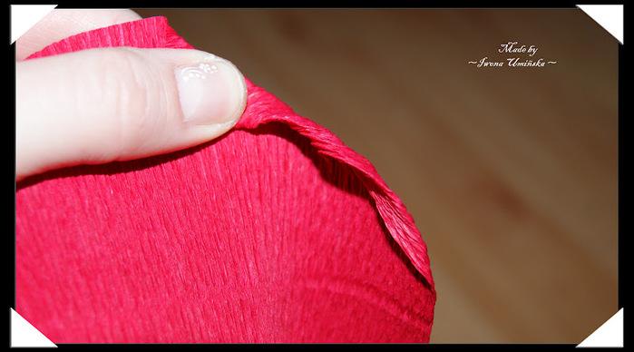 Как сделать розу из гофрированной бумаги. Мастер-класс