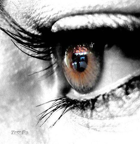 eyes_007 (450x463, 46Kb)