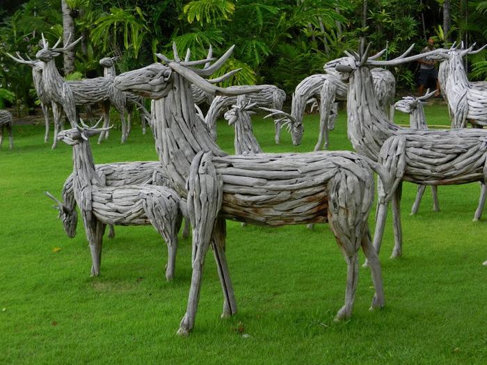 Парк Нонг Нуч (Nong Nooch Tropical Garden) 39794
