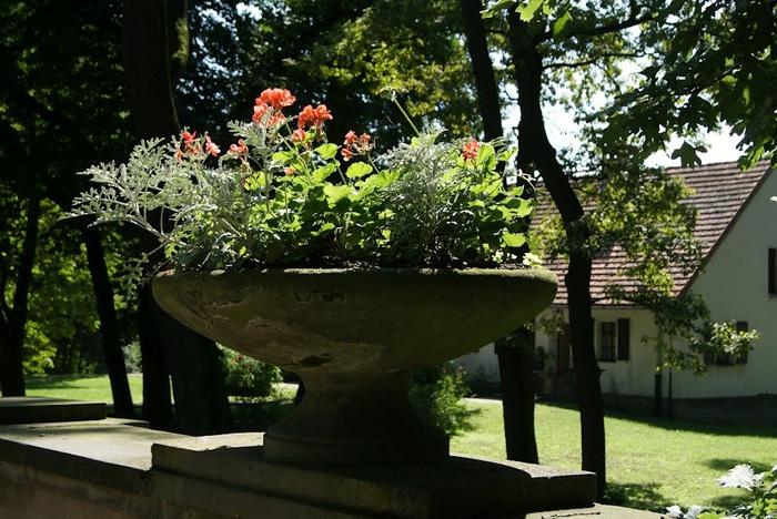 Дворец Рачиньских в селении Рогалин 83719