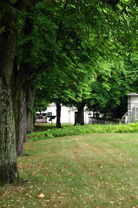 Дворец Рачиньских в селении Рогалин 56297