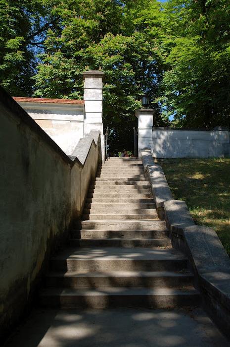 Дворец Рачиньских в селении Рогалин 94545