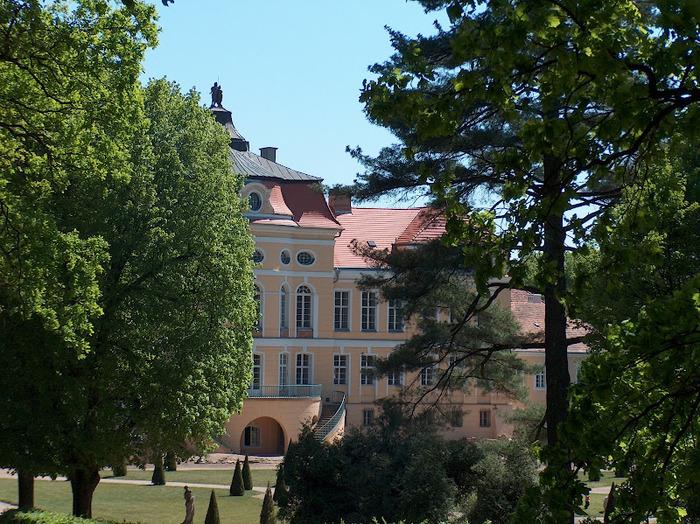 Дворец Рачиньских в селении Рогалин 12025