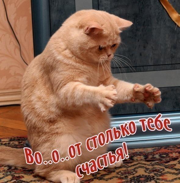 83492736_VO_1OOT_STOLKO_TEBE_SCHASTYA (590x600, 123Kb)