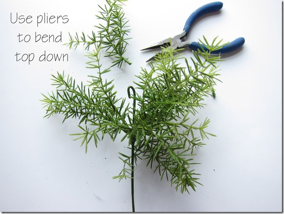 How-to-make-a-topiary-bend-_thumb (554x417, 61Kb)