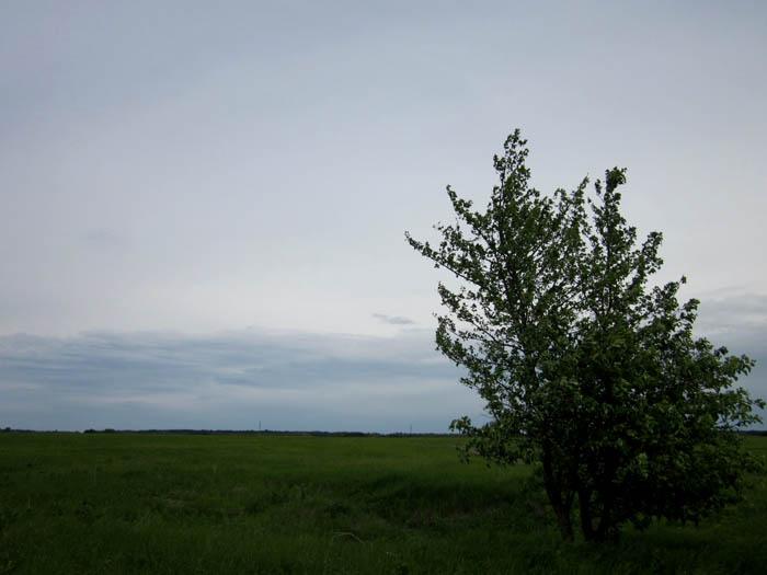 Старая Рязань Валы на горизонте (700x525, 69Kb)