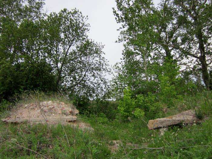 Старая Рязань Развалины чего-то на древнем фундаменте (700x525, 163Kb)