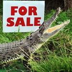 1337593507_krokodil (150x150, 17Kb)