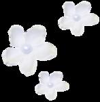 Превью sns_rw_flowers (689x700, 245Kb)
