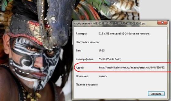 Сохранение дневника LiveInternet на компьютер с картинками/3040753_12 (560x332, 43Kb)