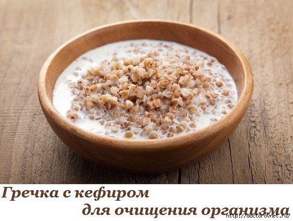 5239983_grechka_s_kefirom (604x457, 150Kb)