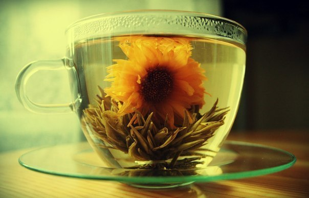 Лечебное применение китайского чая. (604x386, 40Kb)