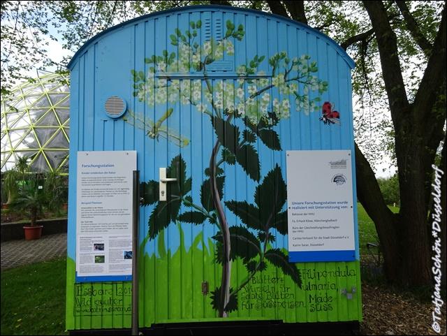 Дюссельдорф-Ботанический сад