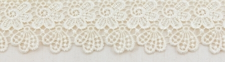 17468893-lace-flowers-frame-close-up-isolated-on-fabric-texture (450x124, 69Kb)