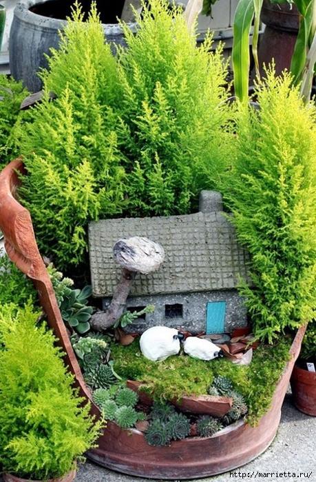 Миниатюрный сад из цветочного горшка. Идеи (10) (459x700, 360Kb)