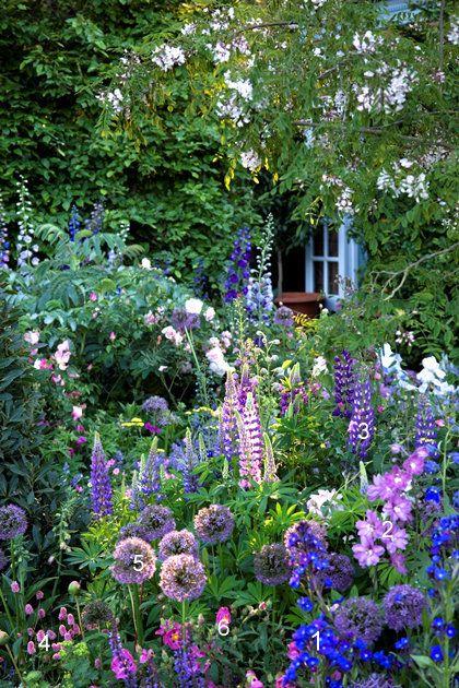 garden (420x630, 452Kb)