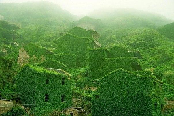 Заброшенная зеленая деревня в Китае 1 (604x402, 242Kb)