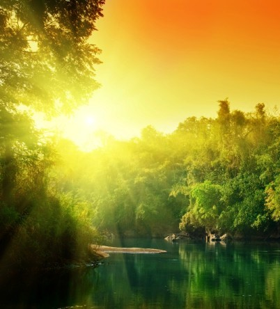 640x480_lush-green-forest-river-at (402x444, 44Kb)