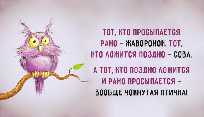 4216969_0_1124d7_740b473d_orig (696x400, 79Kb)